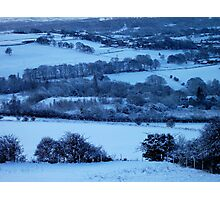 A Winter Field Of Trees! Photographic Print