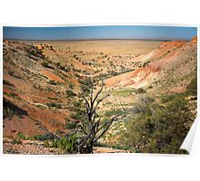 Painted Desert Valley Poster