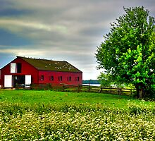 Barn at Upper Canada by Vee Robillard