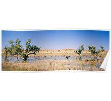 Desert Lagoon Poster