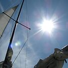 Sail Away by Jennie L. Richards