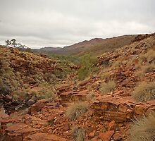 Trephina Gorge 1  by Richard  Windeyer