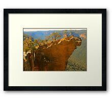 Watch Your Step !!! Framed Print