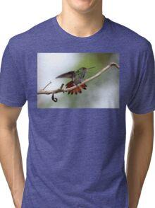 Rufous-tailed Hummingbird Tri-blend T-Shirt