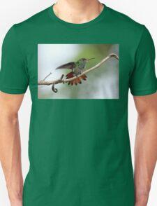 Rufous-tailed Hummingbird Unisex T-Shirt
