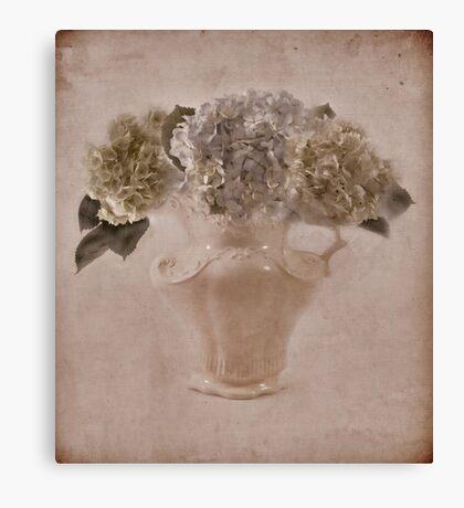 Hydrangea Vintage Beauty Canvas Print