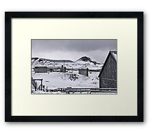 Beauty of the grey Framed Print