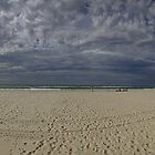 Bilinga Beach Panorama by Noel Elliot