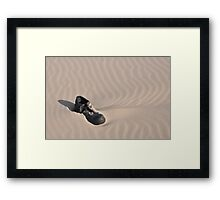 Lonely Shoe  Framed Print