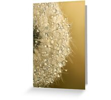 Sun Sparkled Dandy Greeting Card