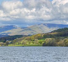 In Search Of Ospreys....Esthwaite Water by Jamie  Green