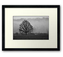 Lonely Framed Print
