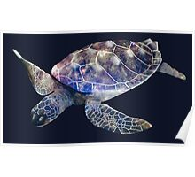 Galaxy Turtle Poster