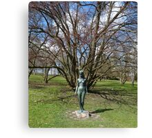 The Fairy of Spring Canvas Print