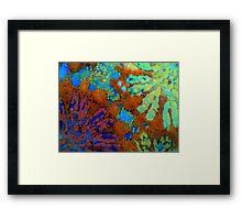 Floral Coral Framed Print