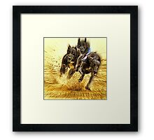 Who let the dogs out ? Framed Print