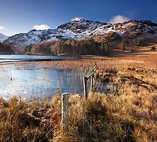 Early morning light on Blea Tarn by Martin Lawrence
