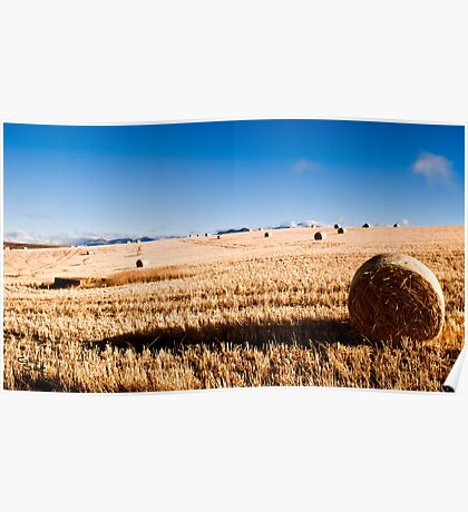 Hay Bale Just After Dawn Poster