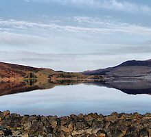 Bala Lake  by Irene  Burdell