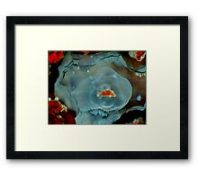 Stone or Jelly? Framed Print