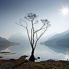 Morning Mist on Buttermere by Martin Lawrence