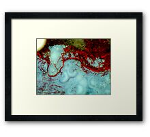 Red Weed Framed Print