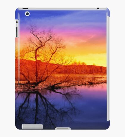 Tranquil Tree Reflection iPad Case/Skin