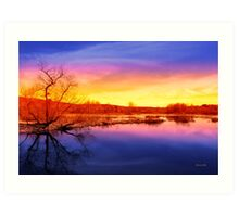 Tranquil Tree Reflection Sunset Landscape Art Print