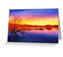 Tranquil Tree Reflection Sunset Landscape Greeting Card