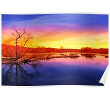 Tranquil Tree Reflection Sunset Landscape Poster