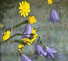 Hedgerow garden by almaalice