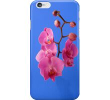 Orchids for you iPhone Case/Skin