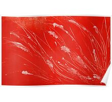 Red Tide Seagrass Poster