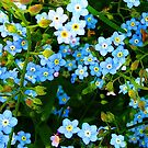 Forget - Me - Not ~ iPhone Case by Greta  McLaughlin