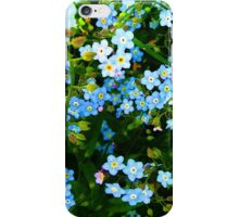 Forget - Me - Not ~ iPhone Case iPhone Case/Skin