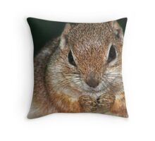 DID YOU SEE MY NUTS? Throw Pillow