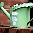The Old, 'Green Frog' Watering Can by Mark Battista