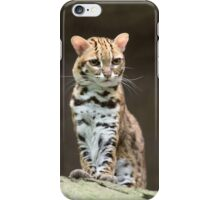 Very annoyed leopard cat iPhone Case/Skin