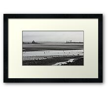 Busy-ness of mudflats Framed Print