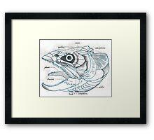 Music sardine skull Framed Print