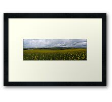 Stadium across the Fields Framed Print