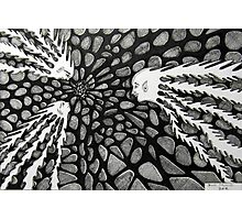 237 - COSMIC RENDEZVOUS - DAVE EDWARDS - INK - 2012 Photographic Print