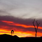 A Lockyer Valley Sunset by Tricia Birt