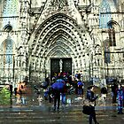 Memories of Spain 8 - Barcelona Cathedral (La Seu) by Igor Shrayer