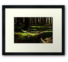 Under the Greenwood Trees Framed Print