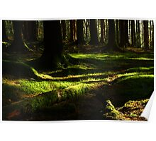 Under the Greenwood Trees Poster