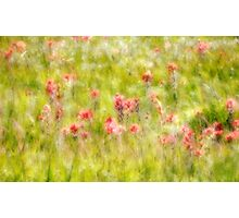 Paintbrush Party Photographic Print