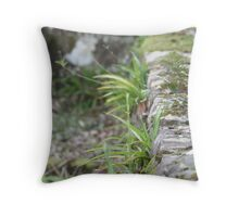 Restful Silence Throw Pillow