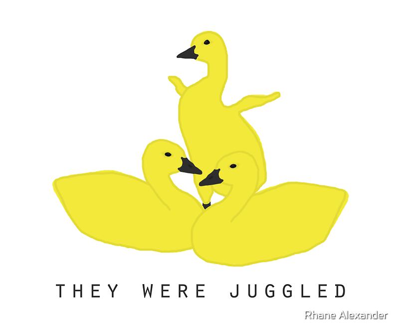 Baby geese - goslings! They were juggled! by rhaneysaurus