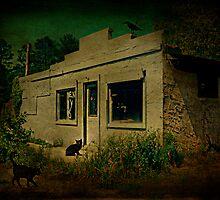 Roadside Coffee Shop by Scott Mitchell